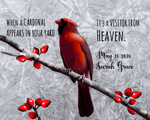 Image of Cardinal Visitor From Heaven Poster Add Message and Name
