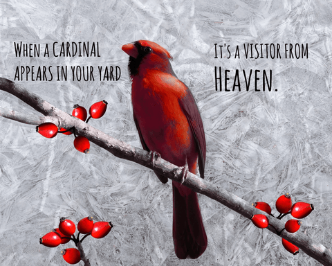 Image of Cardinal Visitor from Heaven Poster
