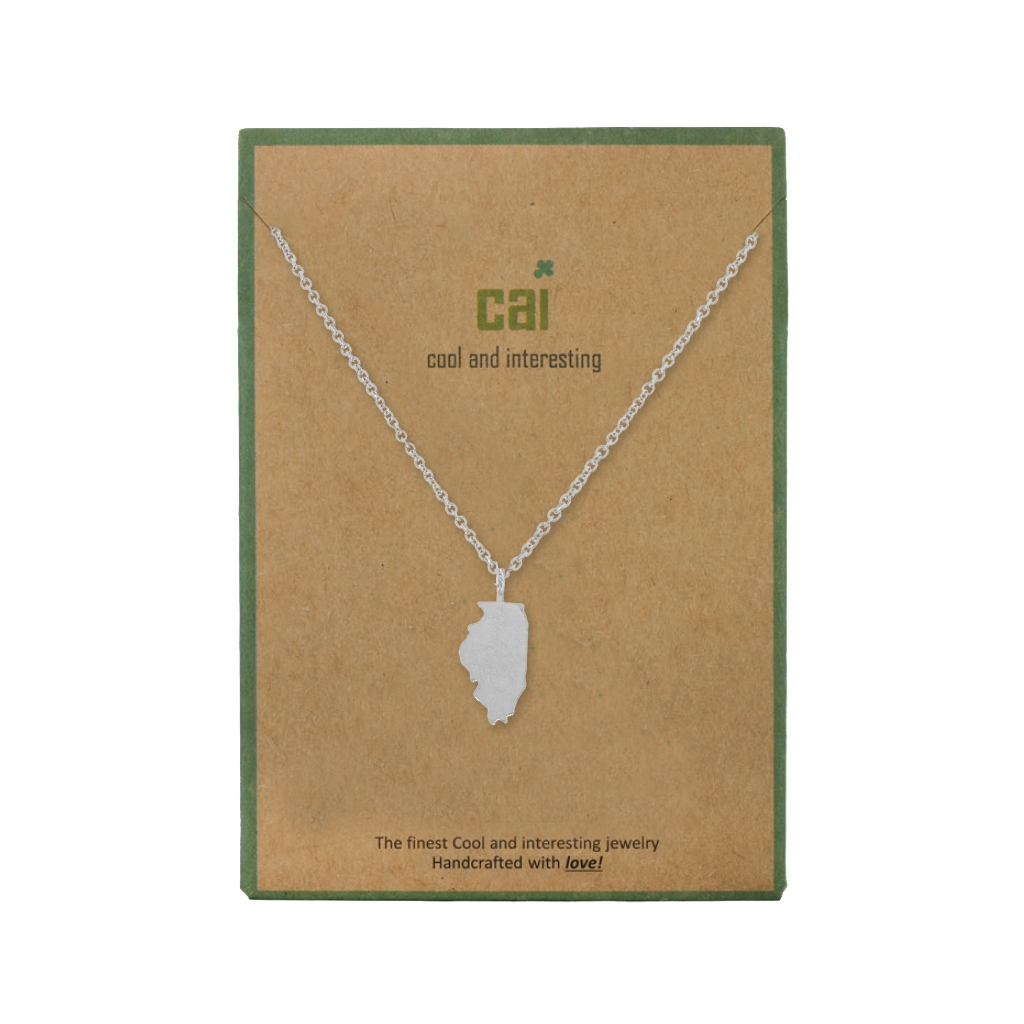 Illinois Dainty Charm State Silver Necklace Cool and Interesting Necklaces
