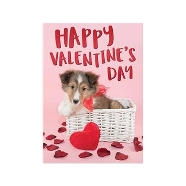 Collie Puppy Valentine's Day Card Design Design Cards - Valentine's Day