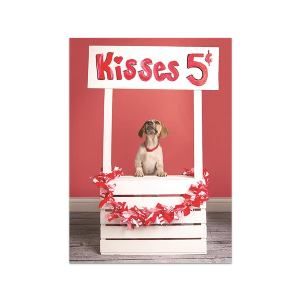 Kisses 5 Cents Dog Valentine's Day Card Design Design Cards - Valentine's Day