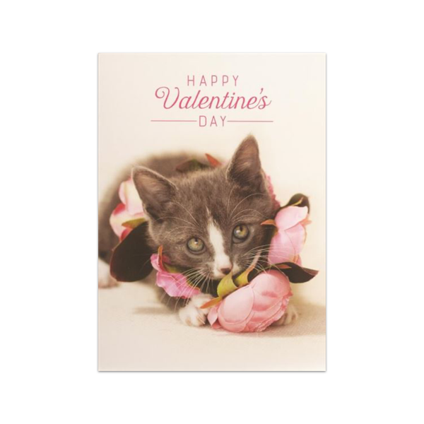 Kitten With Pink Flowers Valentine's Day Card Design Design Cards - Valentine's Day