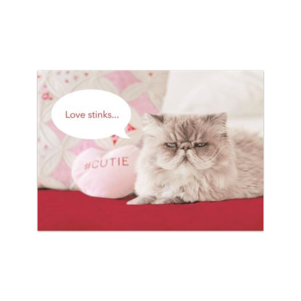 Love Stinks Cutie Cat Valentine's Day Card Design Design Cards - Valentine's Day