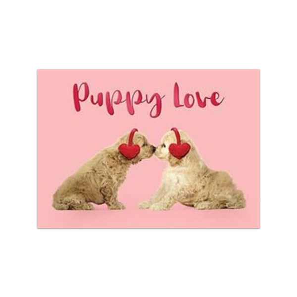 Puppy Love Nose Smooch Valentine's Day Card Design Design Cards - Valentine's Day