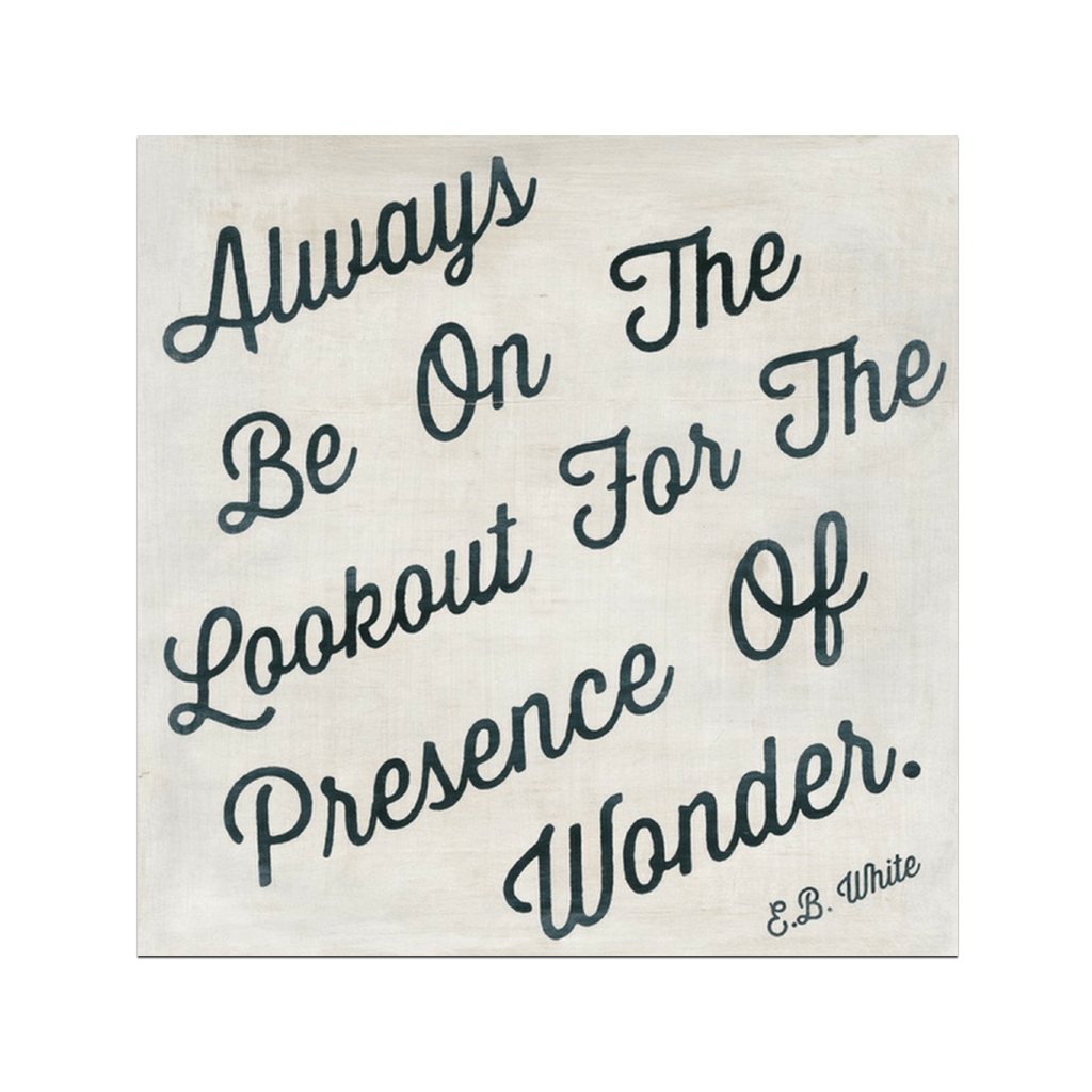 "The Presence of Wonder E.B. White Quote Art Print 12"" x 12"" Sugarboo Designs Plaques, Signs & Prints"