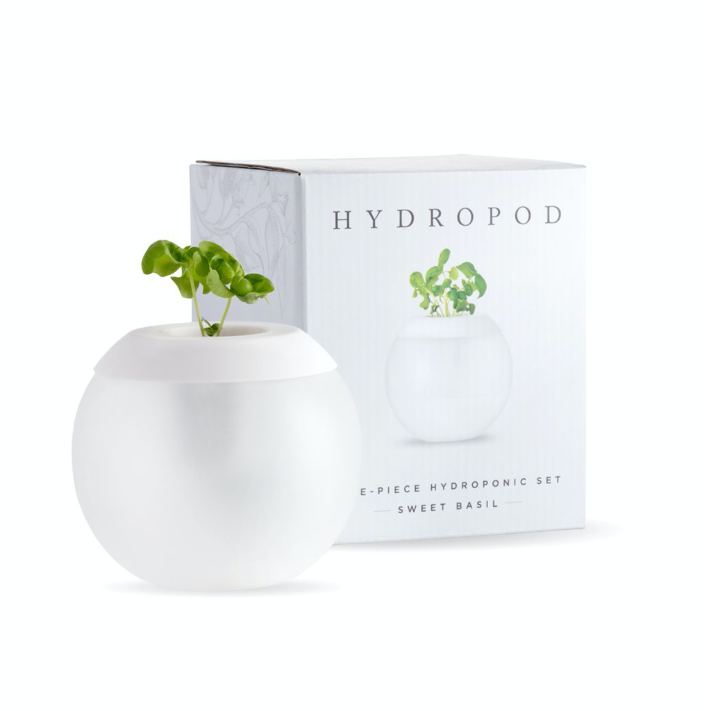 The Hydropod W&P Home - Kitchen