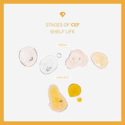 The stages of CEF Shelf Life