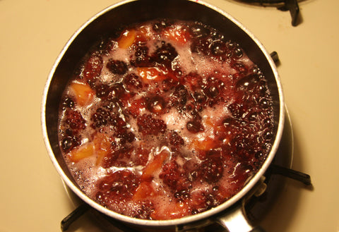 Blackberry Peach Syrup Antioxidants Chaga