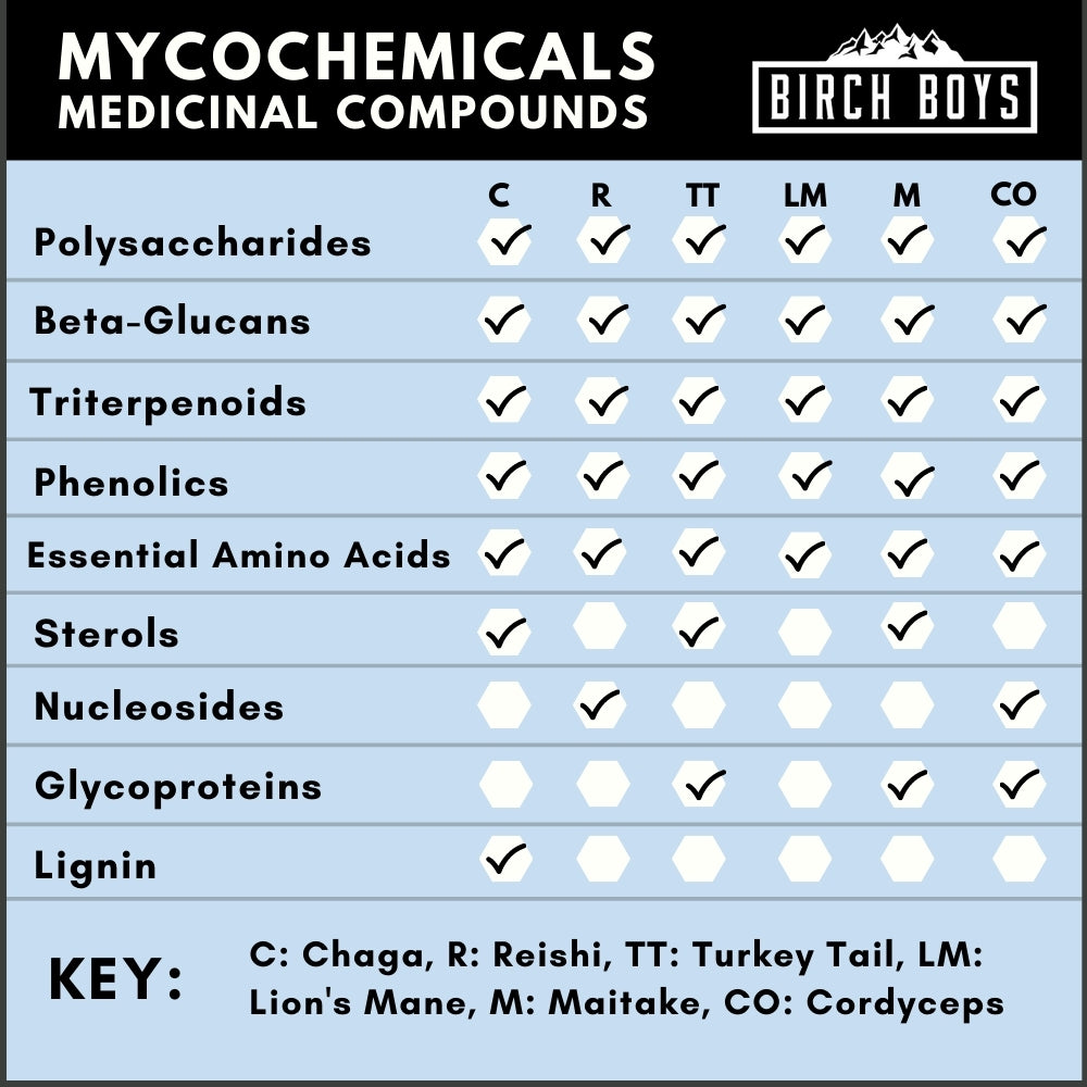 soluble active ingredients of mushrooms mychochemicals