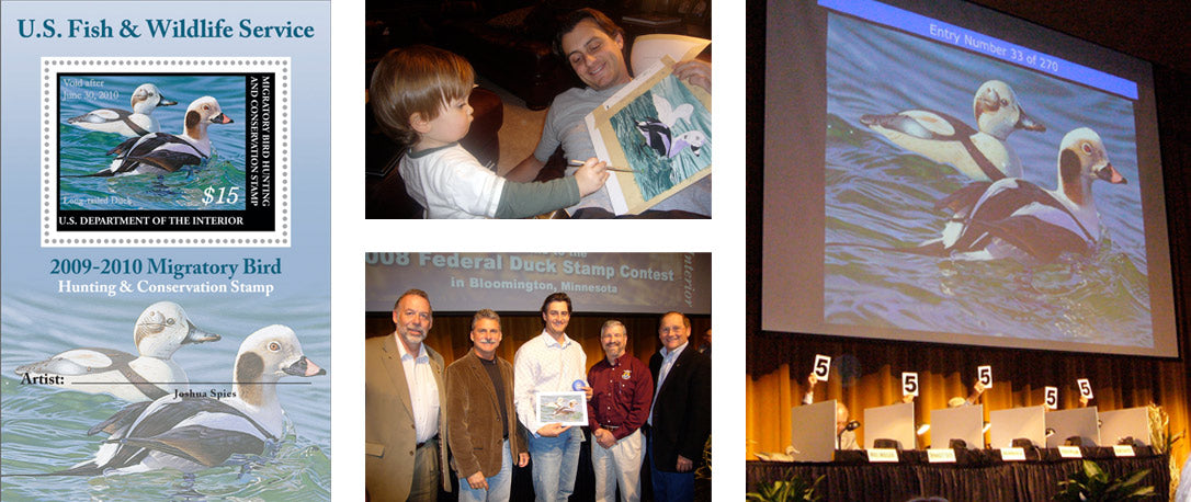 Federal Duck Stamp winner 2008