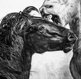 Fighting Stallions - Original Charcoal Painting Matted and Framed