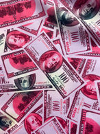 Money Print Fabric - Pink - 100 Dollar Bills Stretch Spandex Fabric By The Yard