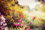 Getting Your Perennial Garden Ready For Winter