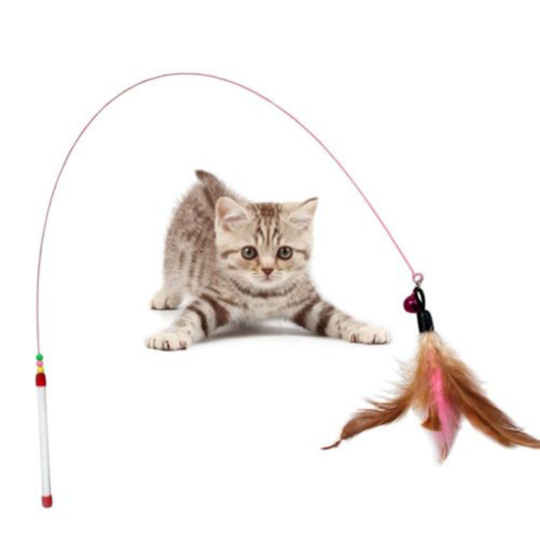 Cat Feather Teaser Toy
