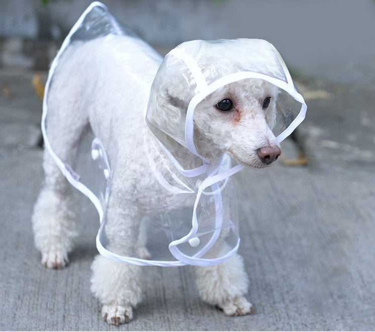 Pet Puppy Rain Coat. Keep Your Puppy Healthy During Those Rainy Weeks.