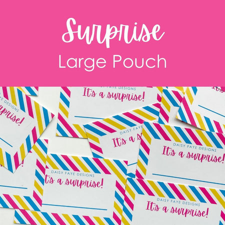 Surprise Large Pouch