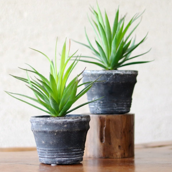 artificial succulents plants in pot