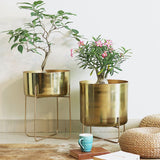 Gold Broad Pot On Stand