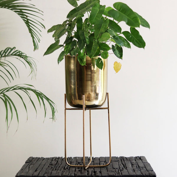 Gold Deep Pot On Stand