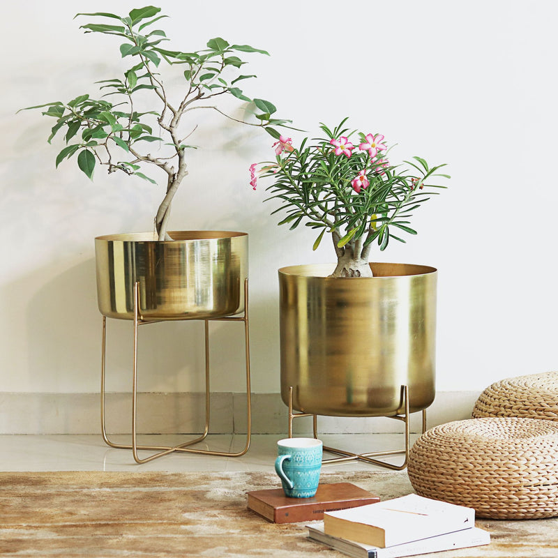 Gold Pail Planter On Stand