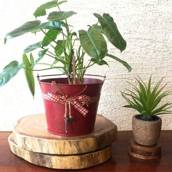 Red Tub Pot S
