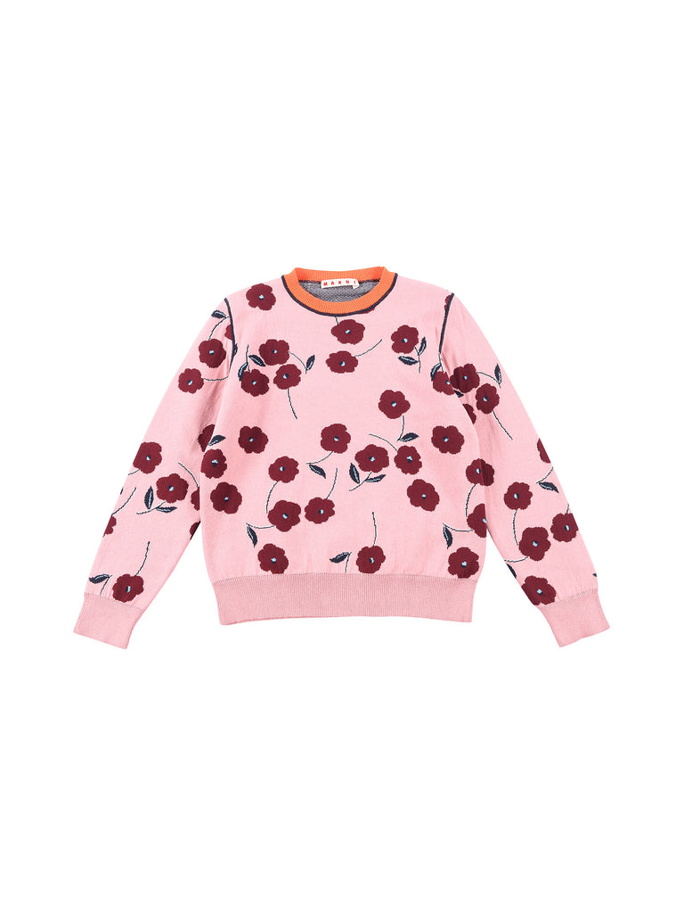 Marni  Chalk Pink Sweater