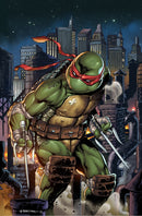 TMNT ONGOING