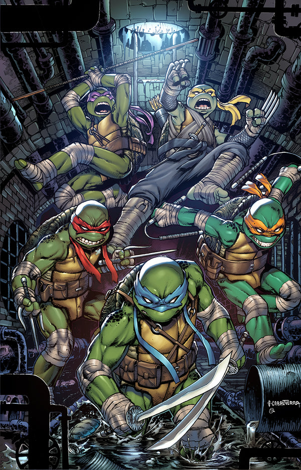 TMNT #100 SLAB CITY COMICS VIRGIN VARIANT & RATIO VARIANTS