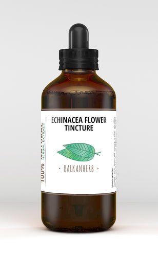 Echinacea tincture - Organic herb drops - Extract