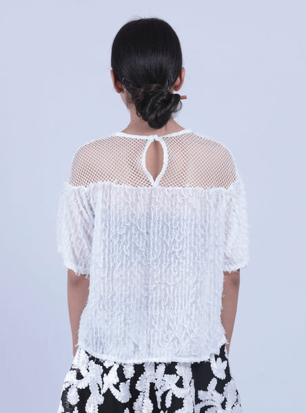 White Scalloped Neck Box Lace Top