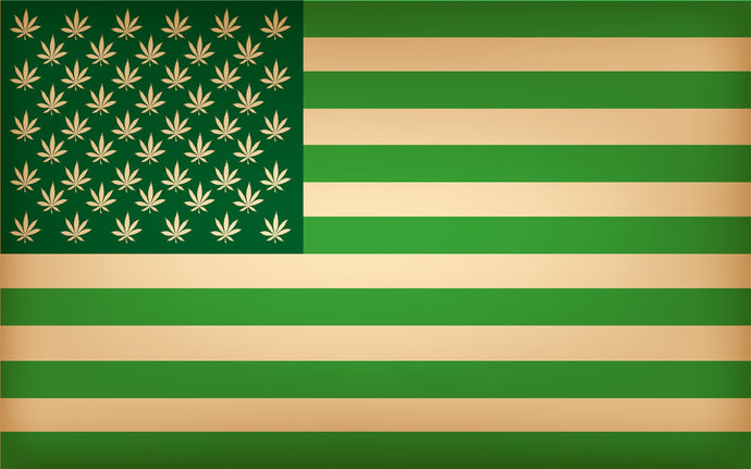 House of Reps Has Officially Voted to End Federal Cannabis Prohibition