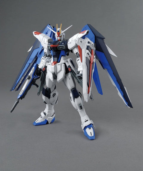 MG Freedom Gundam Ver.2.0