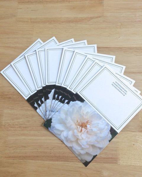 "Handmade Note Cards ""Rose Petals"" Original Design: Set of 10 Cards and 10 Envelopes"