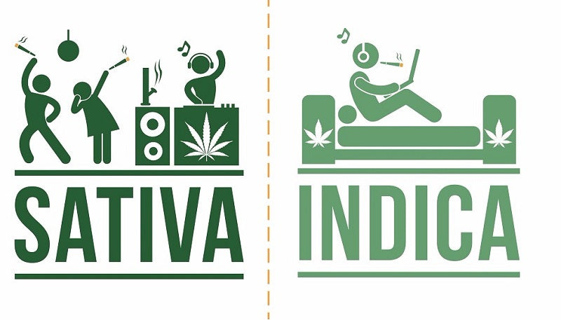 Indica, Sativa, or Does it actually matter?