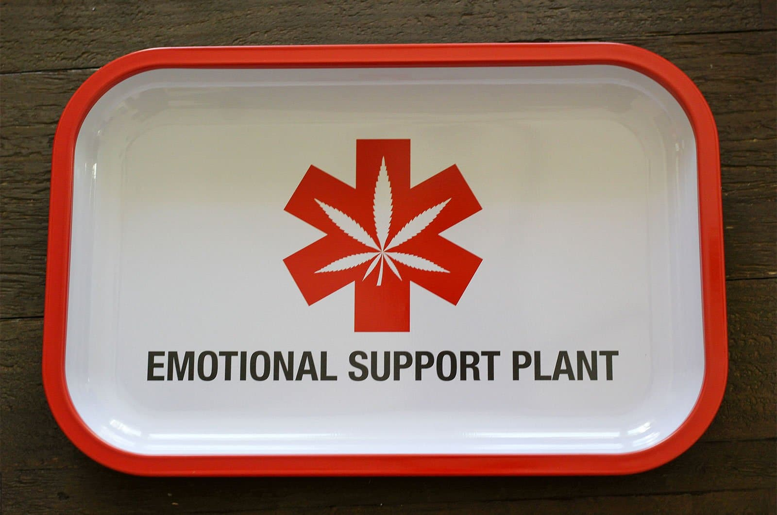 Emotional Support Plant Tray