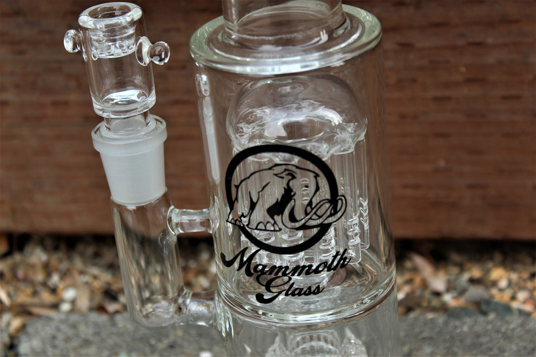 Mammoth Matrix Circ to Tree Perc