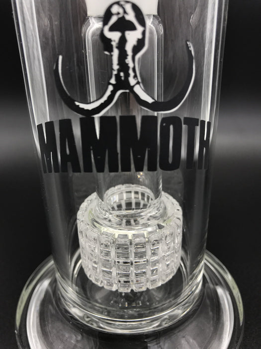 Mammoth Matrix Perc