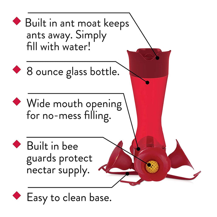 Complete Outdoor Glass Hummingbird Feeder Kit with Nectar, Ant Guard and Cleaning Bush