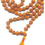 Wholesale: Rudraksha Mala 108 8MM (5 mukhi): Medium Size Beads 120 malas + FREE SHIPPING