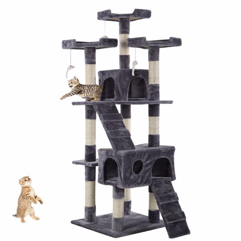 Cat  Activity Center