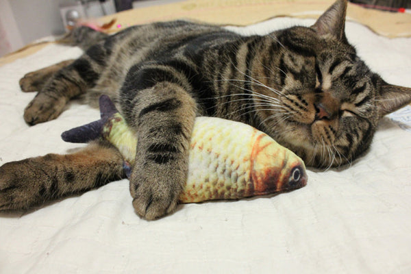 Funny Cat Toy Simulation Fish