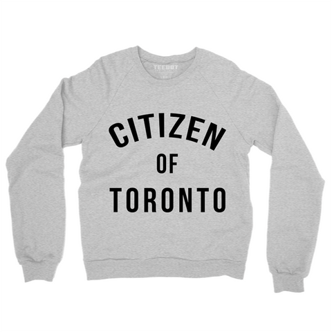 Citizen Of Toronto Sweater (Heather Gray) - Teedot Apparel