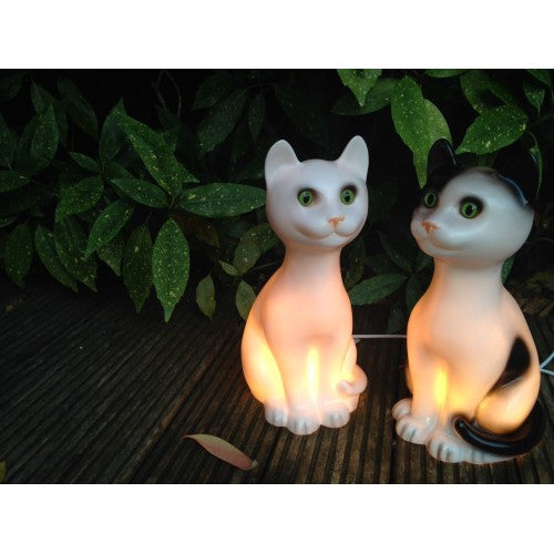 Cat Cleo night light