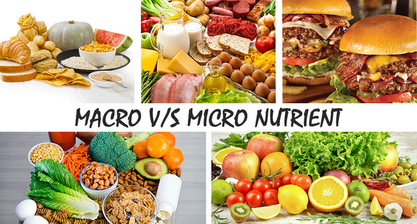 Are Macronutrients Essential Than Micronutrients?