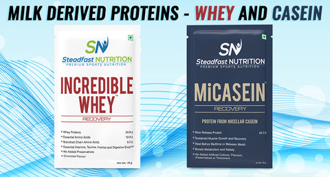 HOW TO CHOOSE A PROTEIN POWDER?
