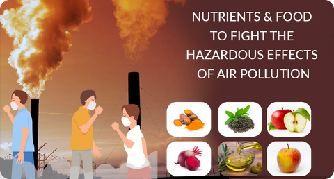 NUTRIENTS TO FIGHT THE HAZARDOUS EFFECTS OF AIR POLLUTION