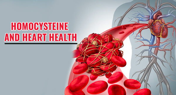 HOMOCYSTEINE AND HEART HEALTH