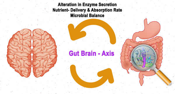 STRESS AND ITS EFFECT ON THE GASTROINTESTINAL (GI) TRACT