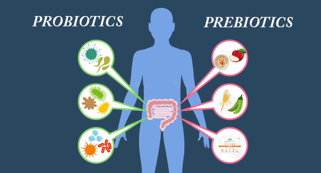 PREBIOTICS AND PROBIOTICS-The Gut friendly  Bacteria
