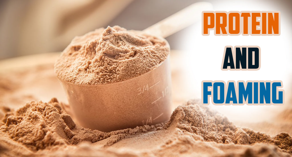 Proteins and Foam (Froth)